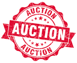 NMJC Auction