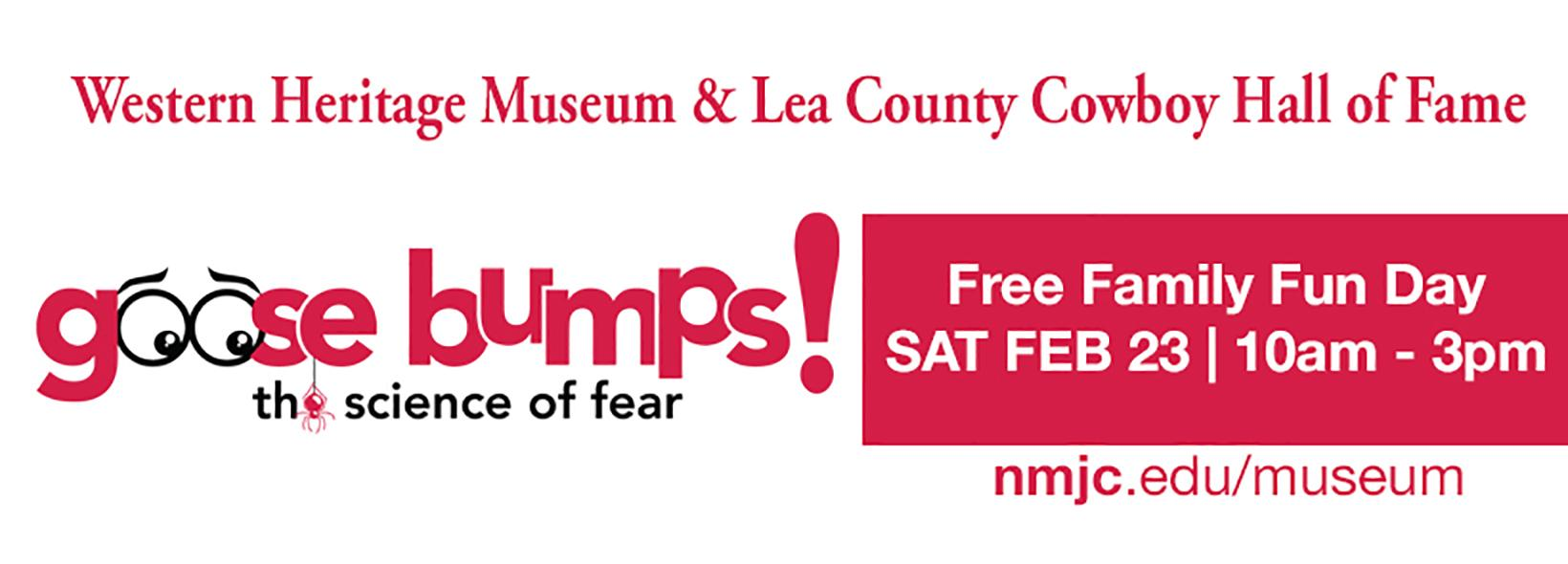 Free Family Fun Day at the Museum